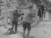 Winterfreuden Anfang des 20. Jahrhunderts