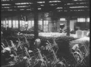 Wirtschaft und Industrie im Kaiserreich